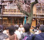 京都木気物語